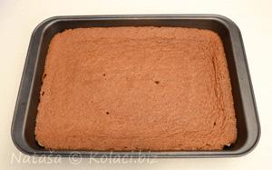 ispeceni biskvit