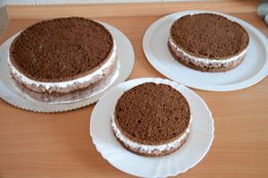 tri torte
