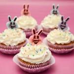 Uskrsni cupcakesi sa višnjama i sirom