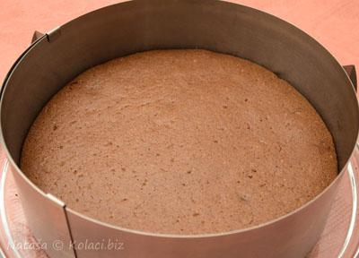 pola-torte
