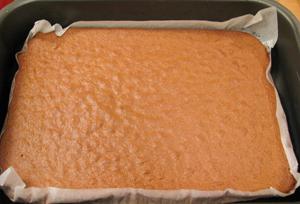 biskvit nakon pečenja