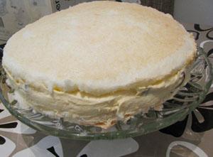 pola torte